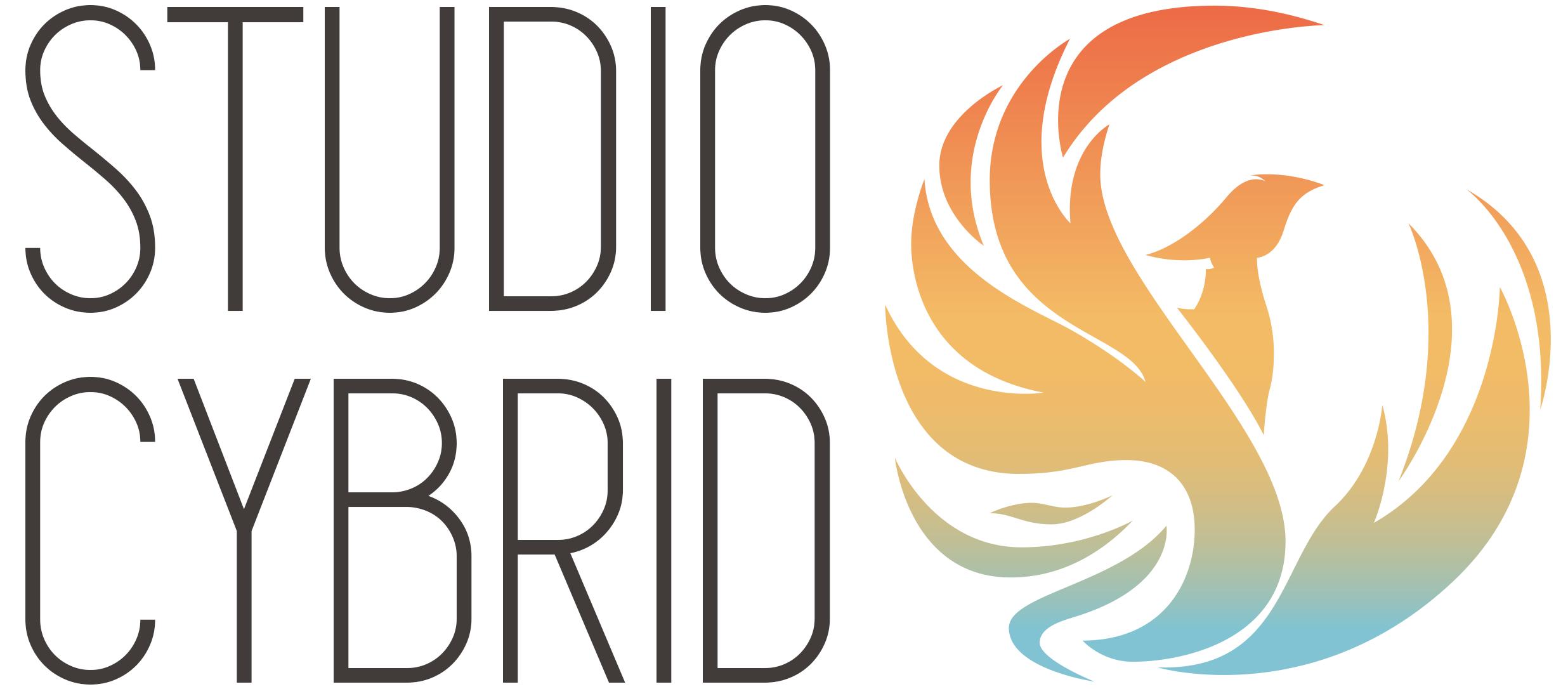 Studio Cybrid